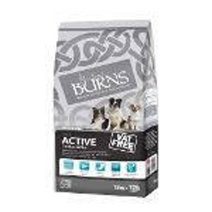 Picture of Burns Canine Active Chicken & Rice 12kg