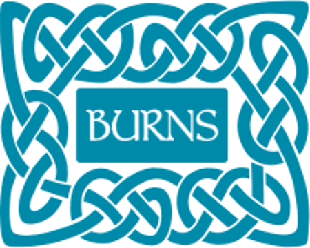 Picture for category Burns Dried Dog Food