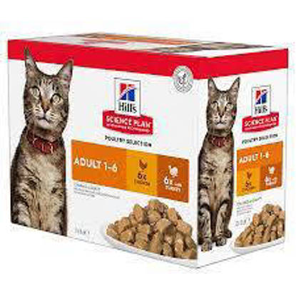 Picture of Hills Science Plan Adult Cat Tender Chunks Multi-pack Poultry Selection Pouch x 12 x 85g