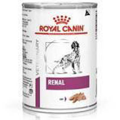 Picture of Royal Canin Dog Renal 410g x 12 Tins