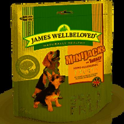 Picture of James Wellbeloved Minijacks (Dog) Cereal Free Turkey 10 x 90g