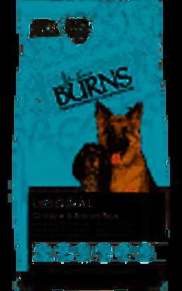 Picture of Burns Canine Original Chicken - 6kg