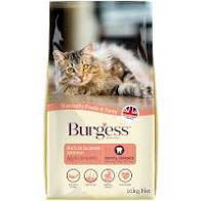 Picture of Burgess Cat Scottish Salmon 10kg