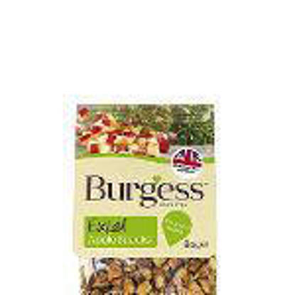 Picture of Burgess Excel Apple Snacks - 8 x 80g