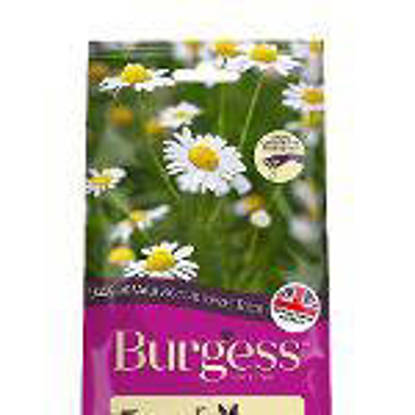 Picture of Burgess excel Mount Meadow Herbs 6 x 120g